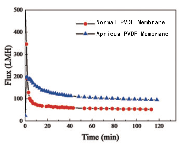 Highly-antifouling PVDF hollow fiber ultrafiltration membrane